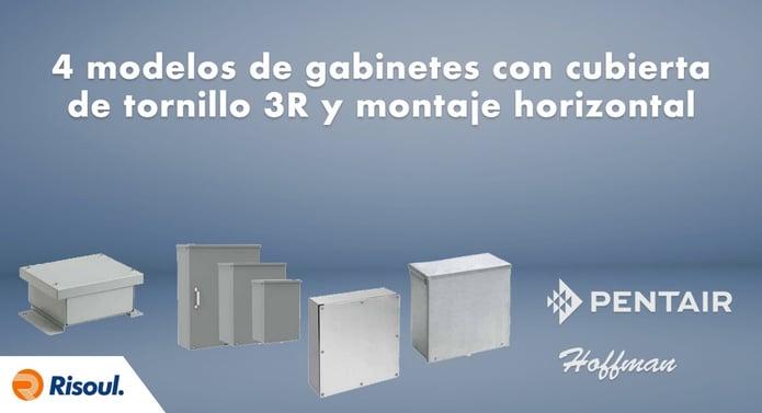 4 modelos de gabinetes Hoffman con cubierta de tornillo 3R y montaje horizontal