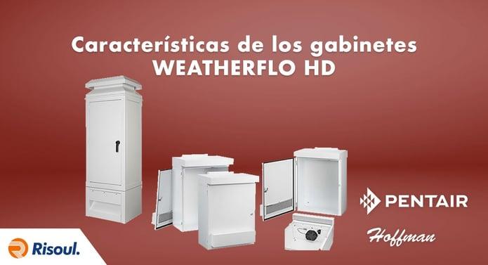 Características de los gabinetes WEATHERFLO HD de Hoffman