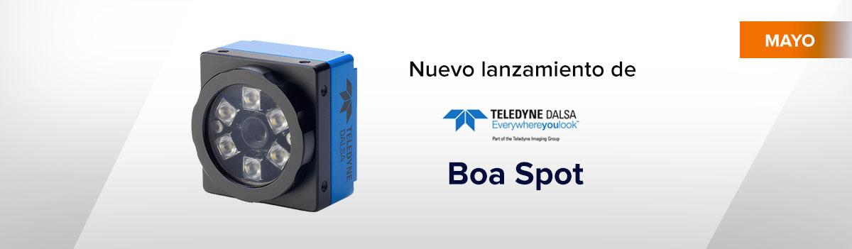 BOA Spot